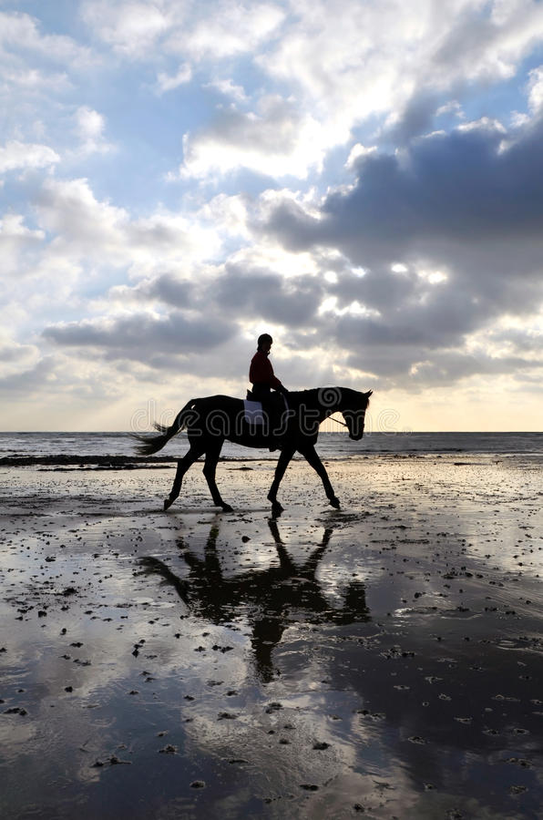 Silhouette of a Horse Rider Walking on Beach stock photography