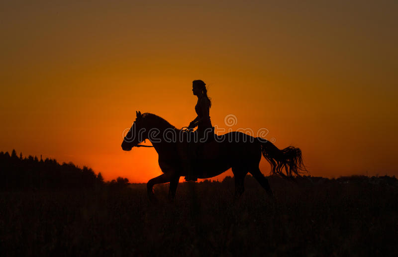 Silhouette of a horseback rider in sunset stock images