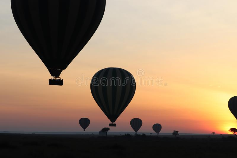 Silhouette of hot air balloons during sunrise. Silhouettes of hot air balloons in the african savannah of the Maasai Mara National Reserve, in Kenya stock images