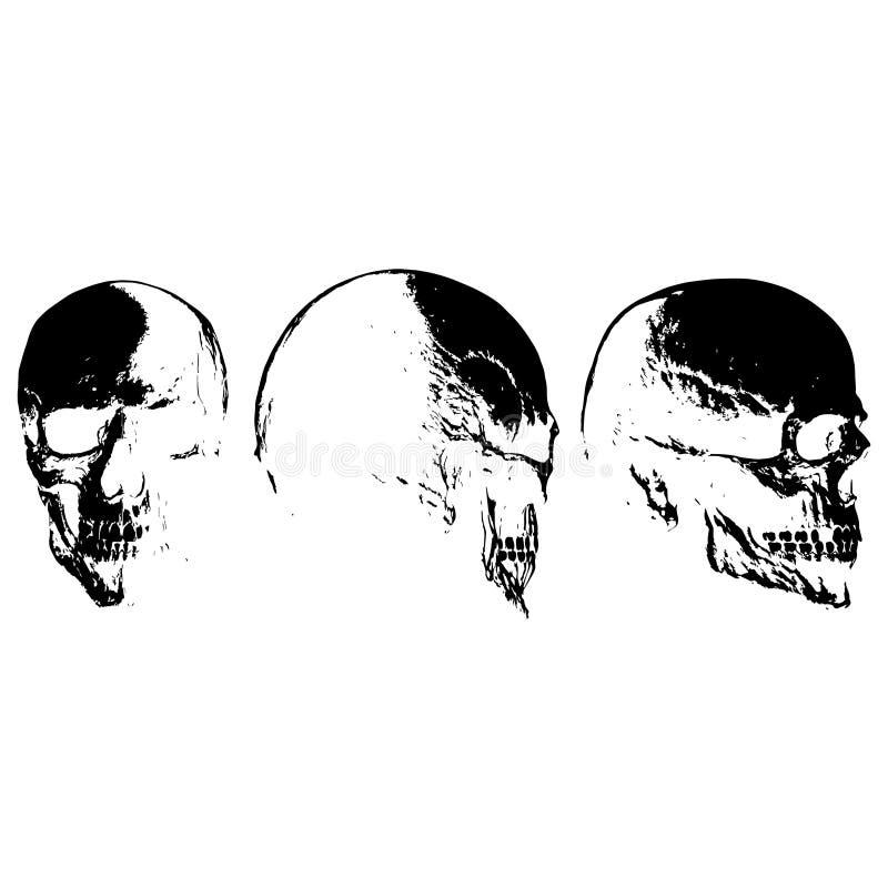 Silhouette humaine du ` s de crâne photographie stock libre de droits