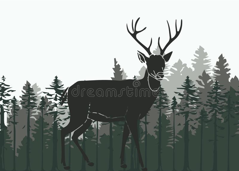 Deer in the woods vector illustration