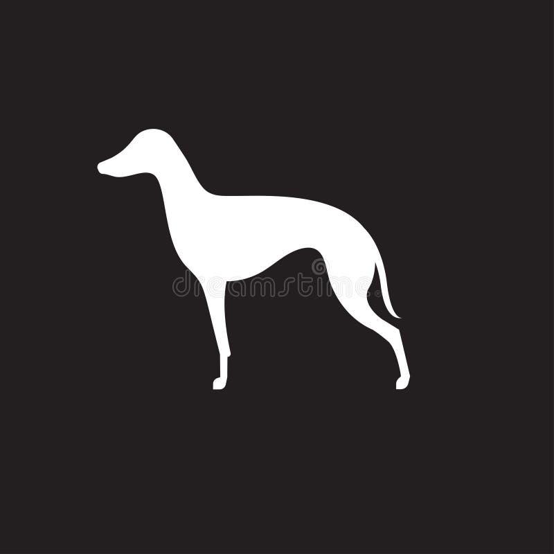 Silhouette of italian greyhound vector illustration
