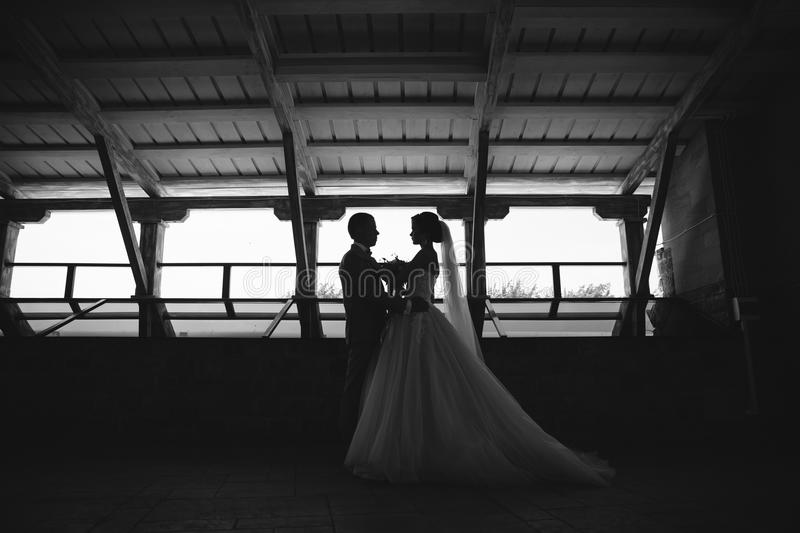 Silhouette just married couple of beautiful groom in a gray business suit and a bride in a luxurious white dress with a. Veil with amazing haircut. Newlyweds at stock photography
