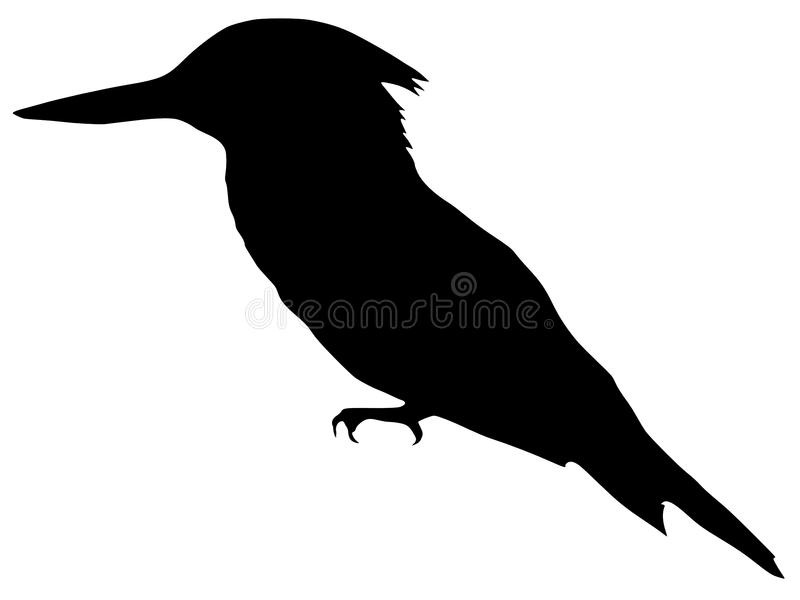 download silhouette of kingfisher stock vector image of kingfisher 14021199