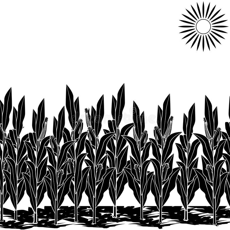 Silhouette lawn with corn and shadow. Silhouette lawn with corn on a white background royalty free illustration