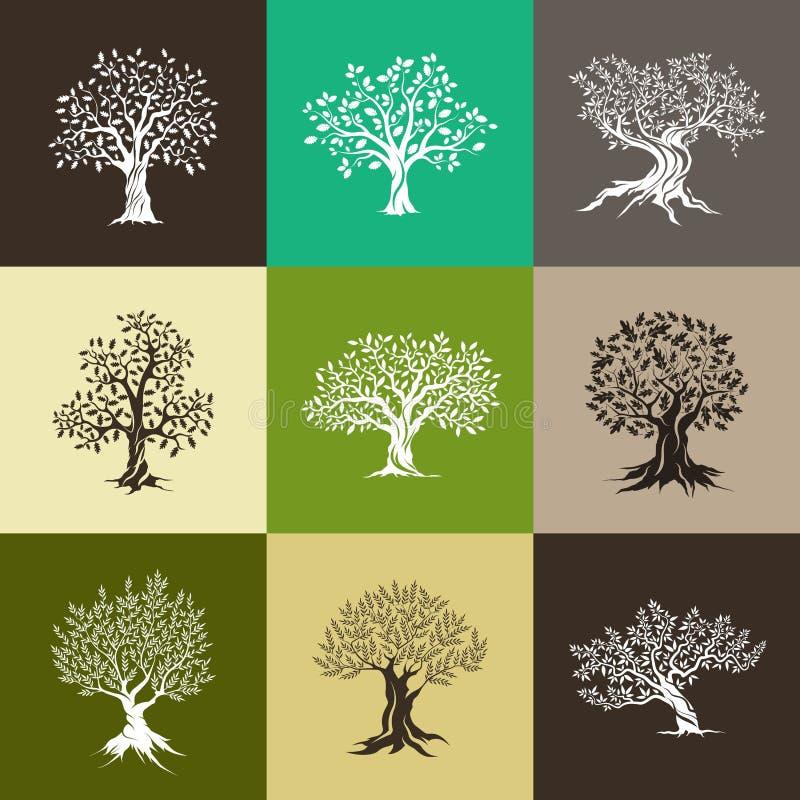 Silhouette magnifique d'olive et de chênes illustration de vecteur