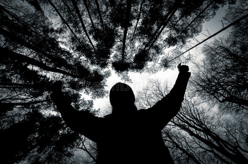 Silhouette of a man against trees in black and white. Silhouette of a man against a background of trees in winter, shot in black and white royalty free stock image