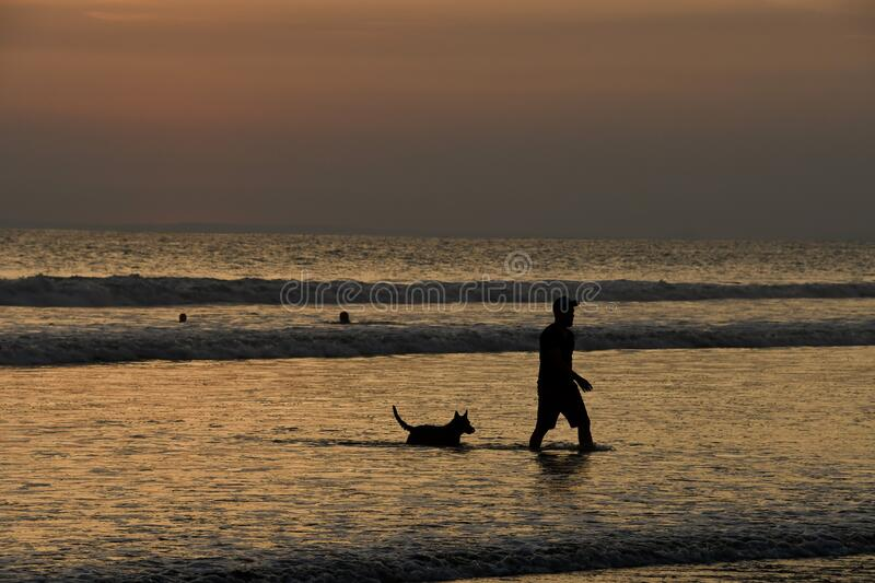 Silhouette of man with dog on beach at sunset, photo as a background. Digital image royalty free stock photo