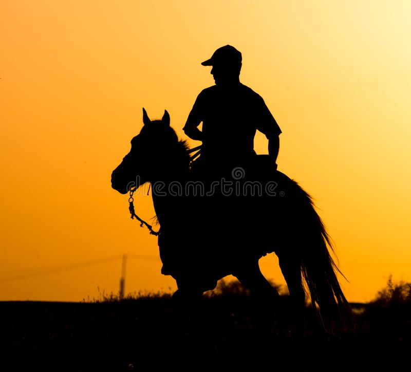 Silhouette of a man on a horse at sunset stock photos