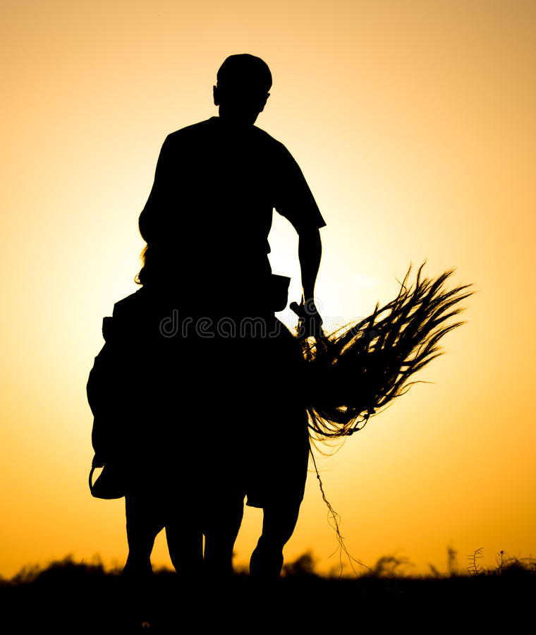 Silhouette of a man on a horse at sunset royalty free stock photography