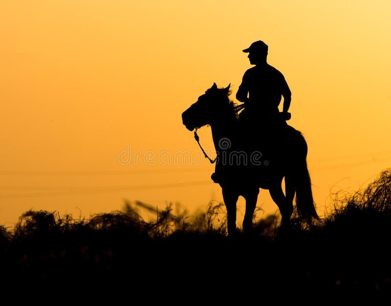 Silhouette of a man on a horse at sunset stock photography