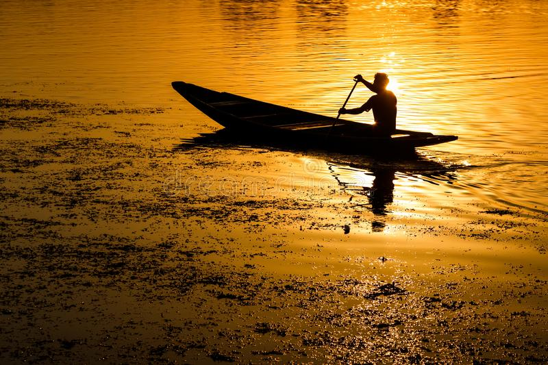 Silhouette of a man peddling in a boat at sunset royalty free stock image