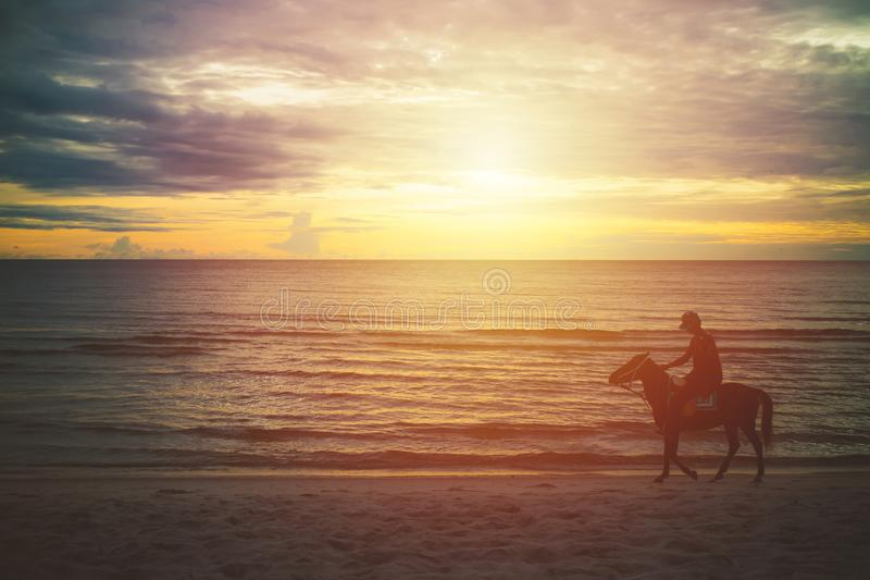 Silhouette man riding horse on the beach in the morning stock image