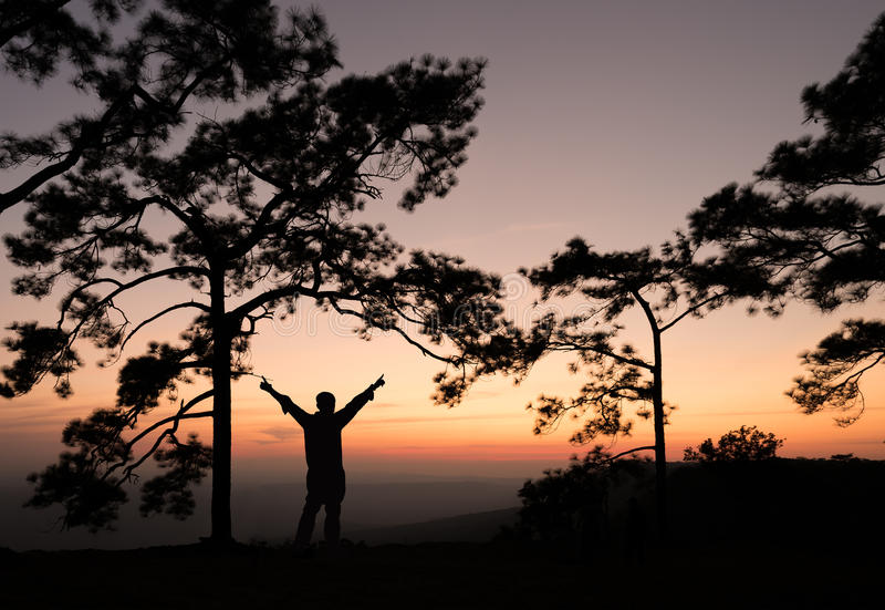 Silhouette of man spreading hand on pine tree with sunset view. royalty free stock image