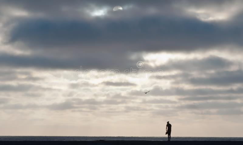 A silhouette of a man standing on a Pacific ocean beach. At sunset with a seagull flying above him in southern California, USA stock photos