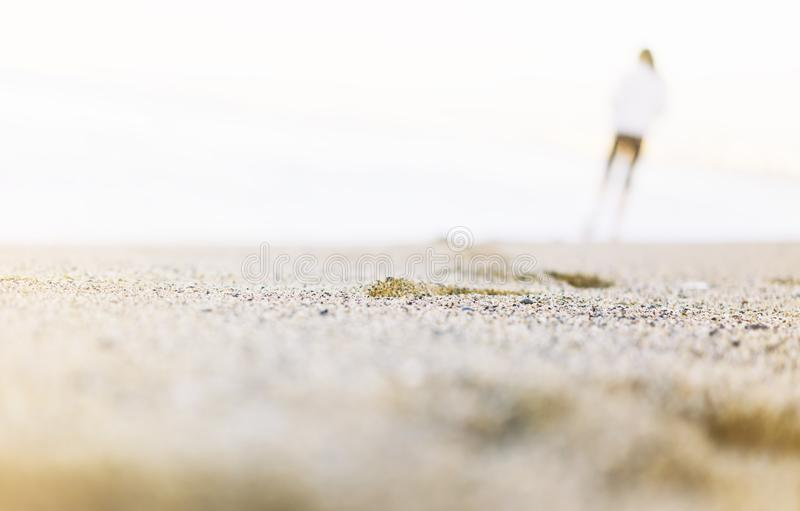 Silhouette of man strolling along coastline beach on sunny day background of sea and sky, gold sand close up blur, tourism relax. Concept, seascape perspective stock photography