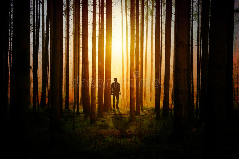 Silhouette of a Man during Sunset royalty free stock photos
