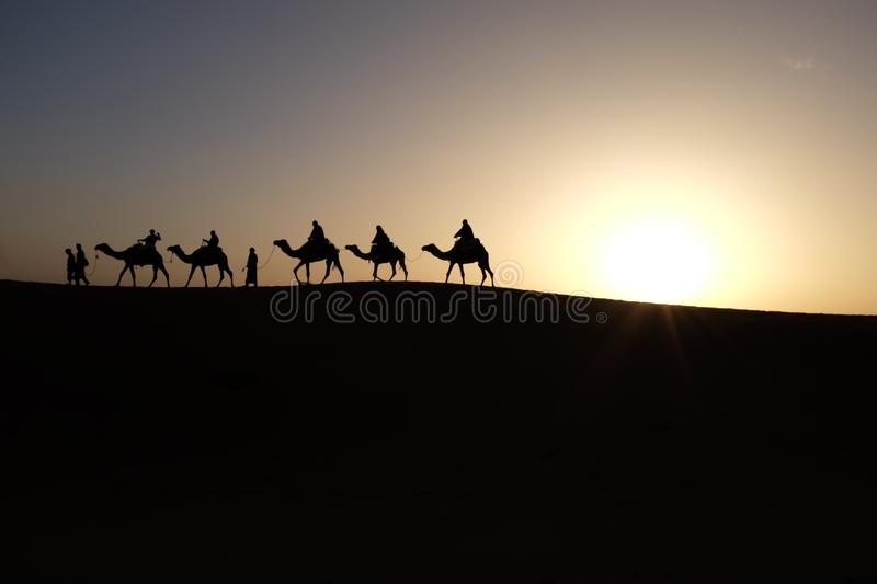 Silhouette Of Men Riding Camels On Desert During Sunset Free Public Domain Cc0 Image