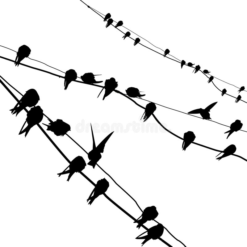 Free Silhouette Migrating Swallow Royalty Free Stock Image - 6452426