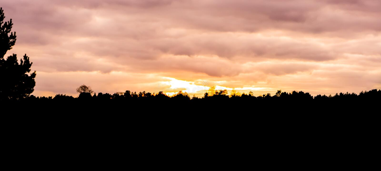 Silhouette of a moorland landscape in the forest at sunset, sundown giving orange and pink colors in the sky and clouds royalty free stock photos