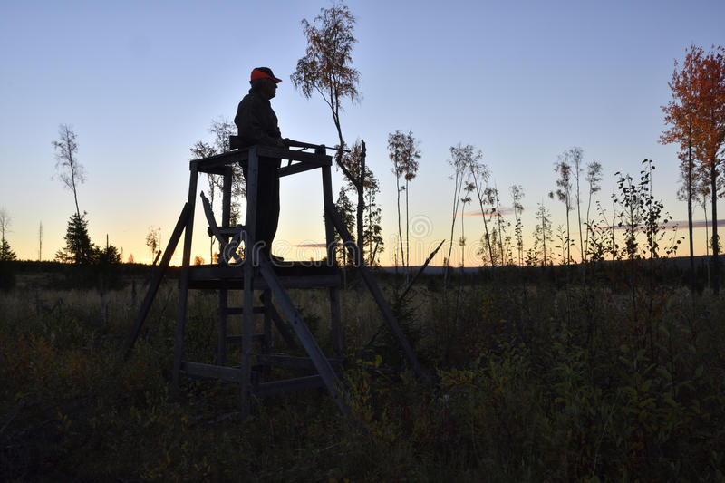 Silhouette of a Moose hunter standing in a hunting tower stock photography