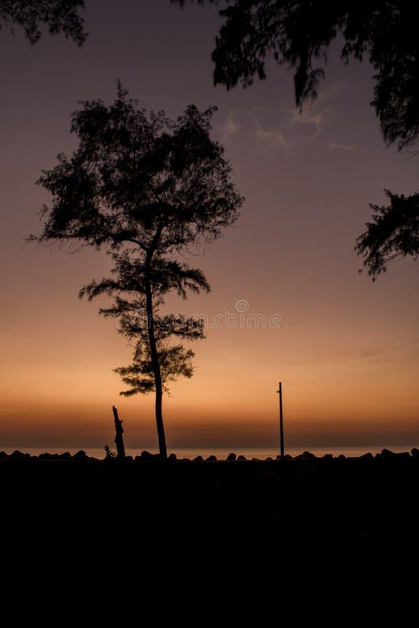 Silhouette noire d'un arbre et un courrier de lampe sur le remblai avec des tetrapods contre la mer sous une soirée pourpre orang photos libres de droits