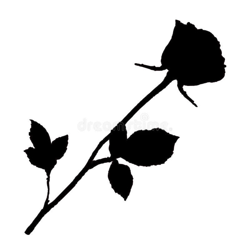 Silhouette noire de fleur rose d'isolement sur le fond blanc illustration libre de droits