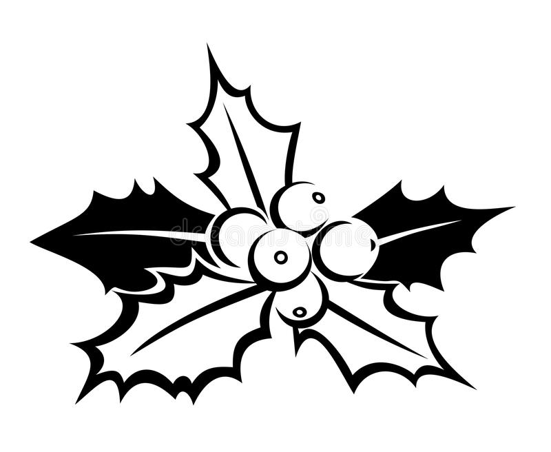 Silhouette noire de houx. Illustration de vecteur. illustration stock