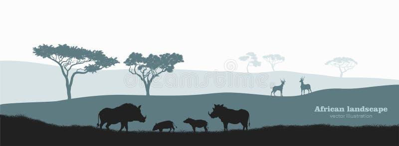 Silhouette noire de verrat africain Paysage avec la famille de phacochère de désert Paysage avec les animaux africains sauvages illustration libre de droits