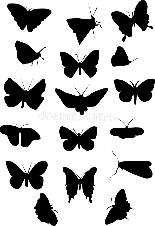 Free Silhouette Of Butterflys Royalty Free Stock Photography - 4093757
