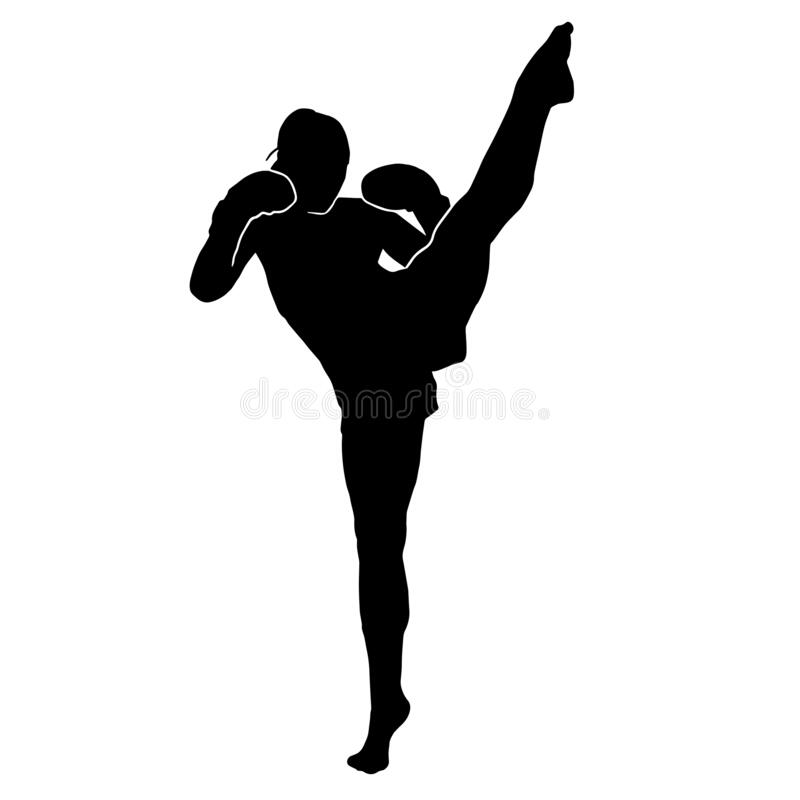 Free Silhouette Of Martial Art Female Kicking Stock Photography - 215807532