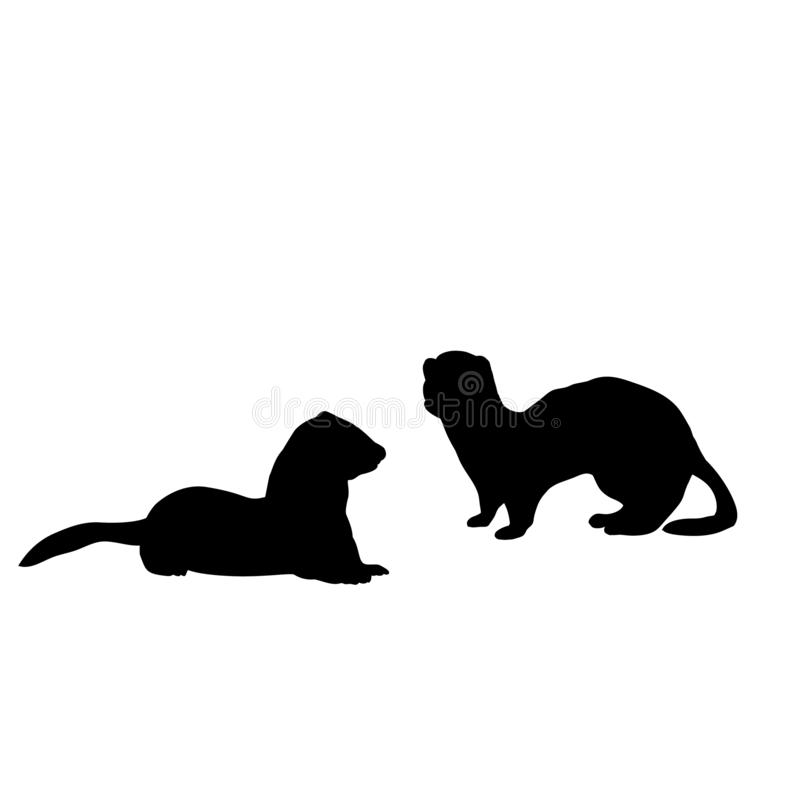 Free Silhouette Of Two Weasels And A Ferret. An Animal Of The Marten Family Royalty Free Stock Photo - 163862155