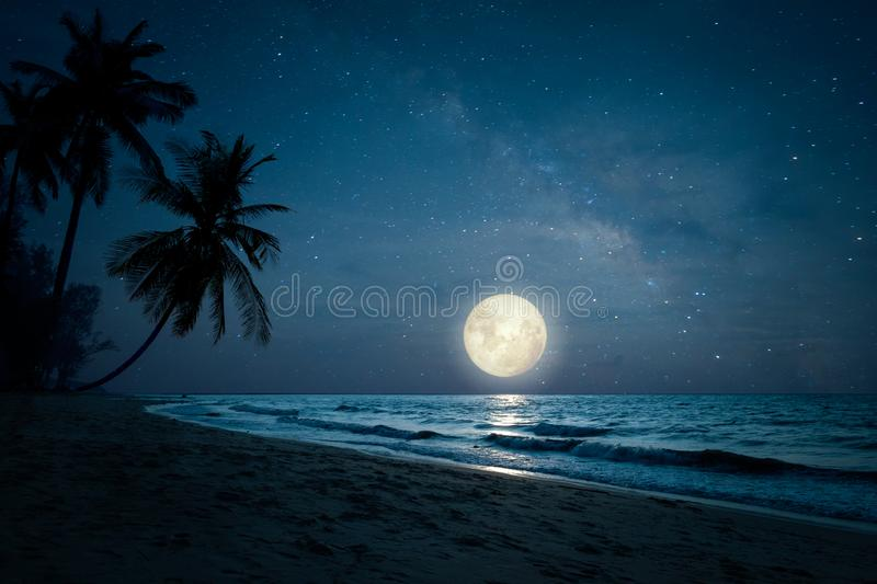Silhouette palm tree in night skies and full moon - dreamlike wonder nature. Beautiful fantasy of landscape tropical beach with silhouette palm tree in night stock photo