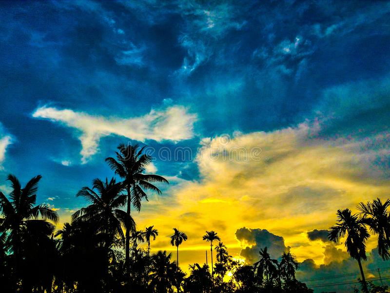 Silhouette of Palm Trees Under Blue and Yellow Sky stock photos