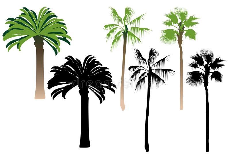 Silhouette palms royalty free stock photos