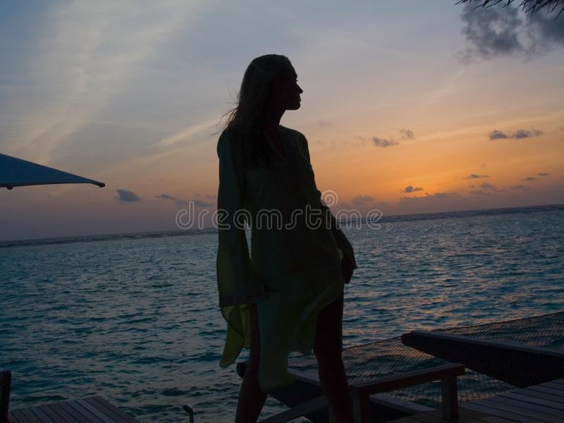 Silhouette in Paradise stock images