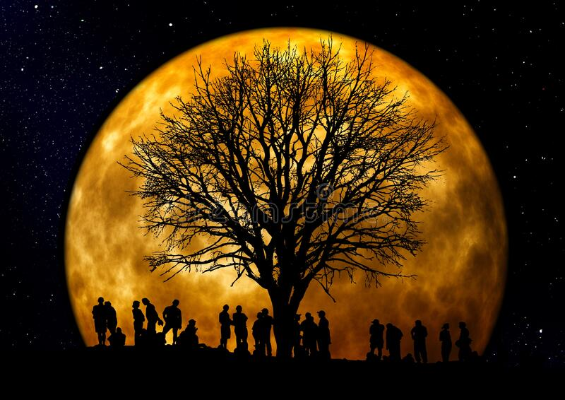 Silhouette Of People Standing Neat Tree Under The Moon Free Public Domain Cc0 Image