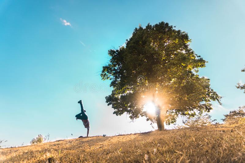 Silhouette of person at the foot of the tree royalty free stock image