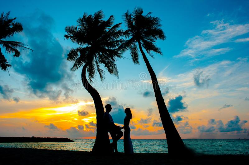 Silhouette Photo of Male and Female Under Palm Trees royalty free stock images