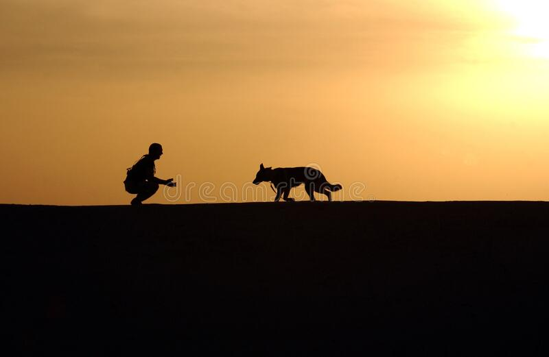 Silhouette Photo Of Man An Dog During Sunset Free Public Domain Cc0 Image