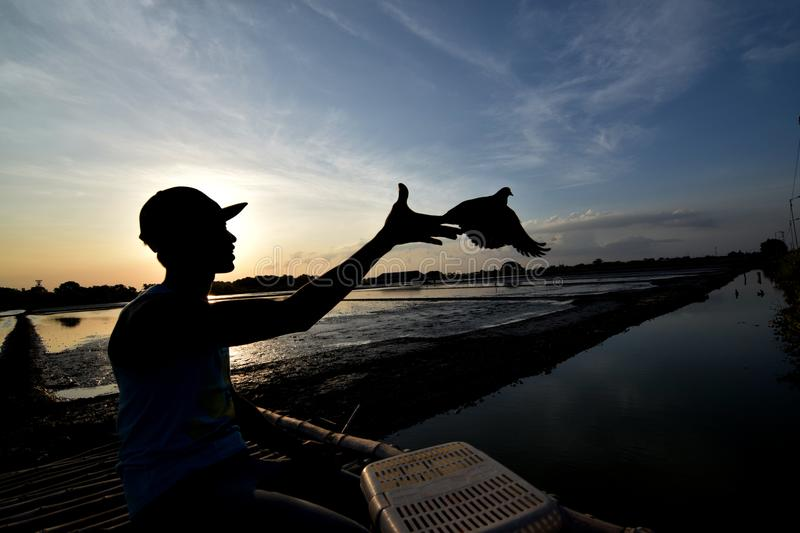 A silhouette photo of a man stock photography