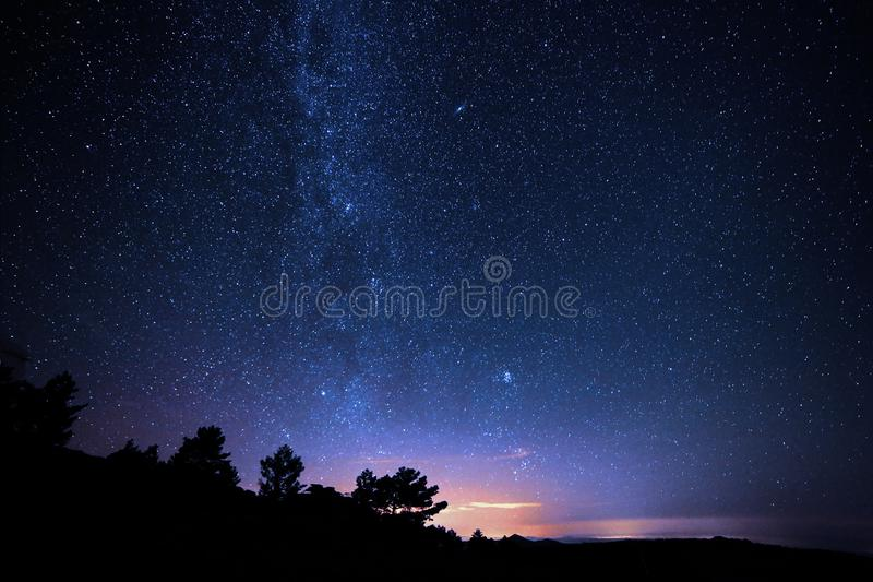 Silhouette Photo of Trees during Night Time royalty free stock images