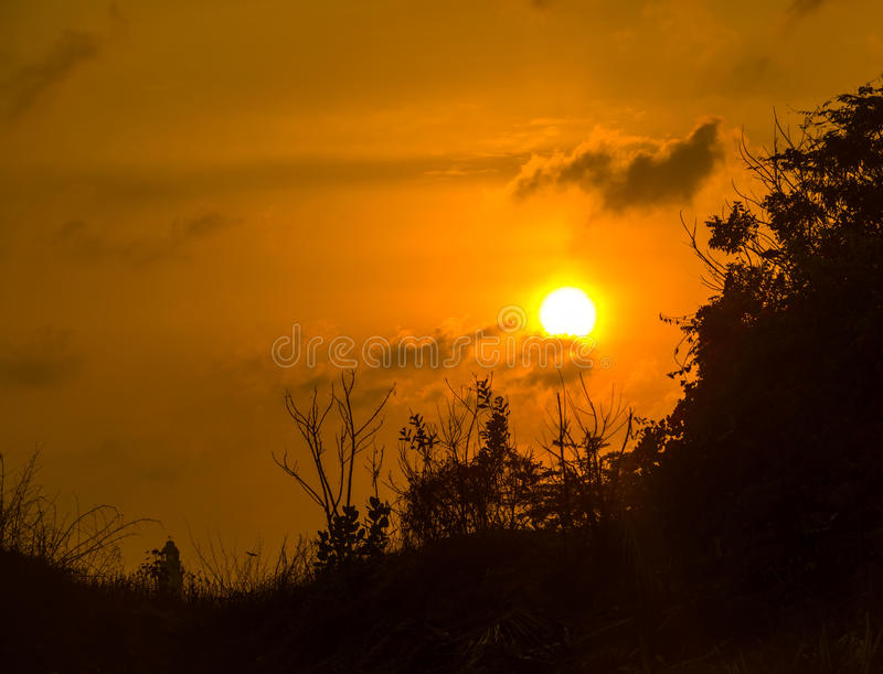 Silhouette with plants at sunset. Mountain silhouette with plants at sunset, India royalty free stock photography