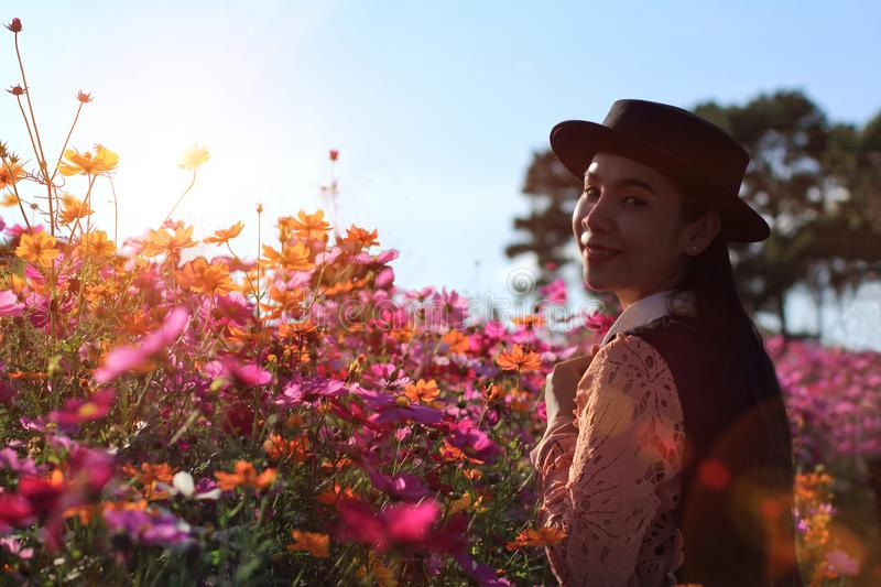 Silhouette portrait lady in flower field at sunrise,caucasian woman with pink cosmos flowers. Woman wearing dress relaxing and happy with smelling flower in royalty free stock photo