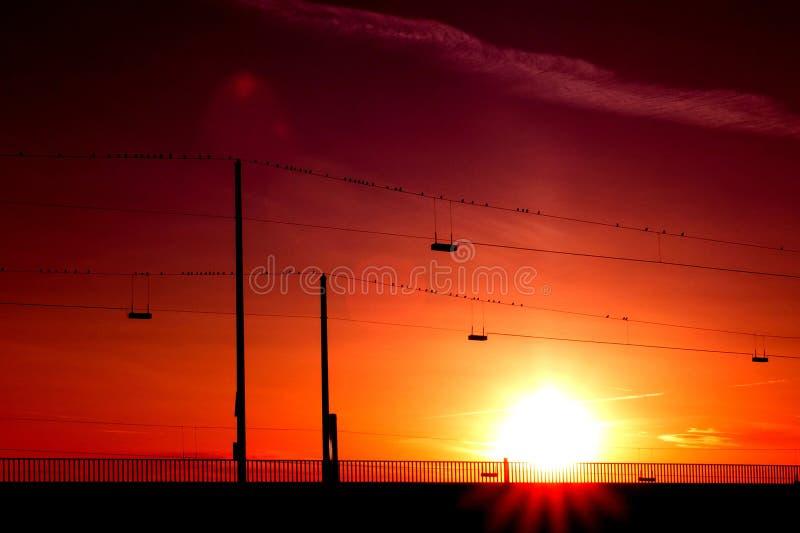 Silhouette of Posts Under Orange Sunset stock photos