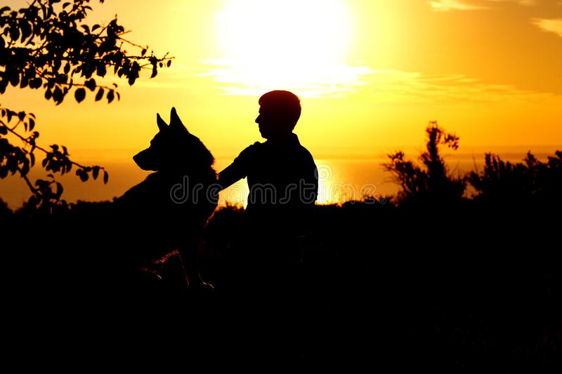Silhouette profile of German Shepherd dog obediently sitting nearby his owner man, boy walking on nature with pet at sunset in a. Field, concept sport and stock images