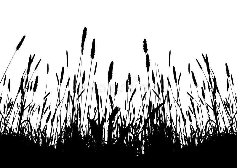 Silhouette réelle de vecteur d'herbe illustration de vecteur