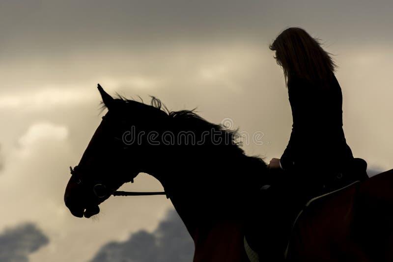Silhouette rétro-éclairée d'une fille montant un cheval au coucher du soleil images libres de droits