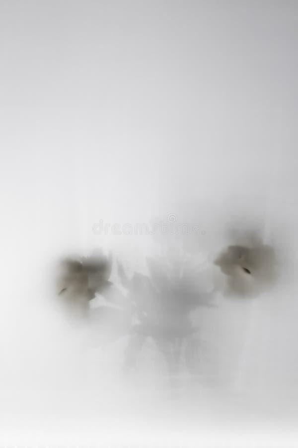 Silhouette rêveuse de fleur sur un fond blanc image stock
