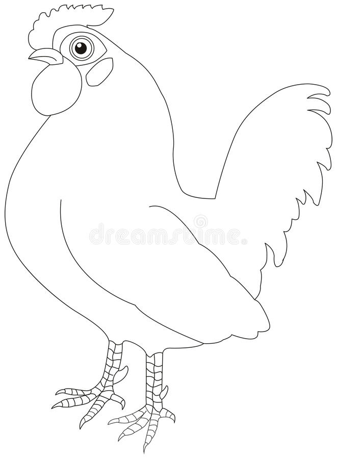 Silhouette of a rooster, on white. stock image